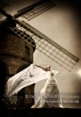 Neil Hanson Photography