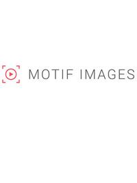 Motif Images Visuals