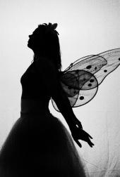 Alina D Photography