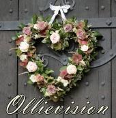 Ollievision