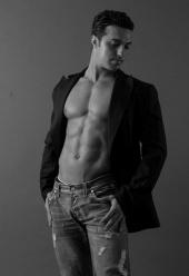 Ryan_model