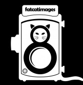 fatcatimages