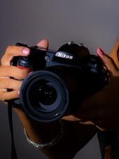 Bay Concept Photography