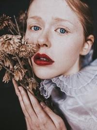 Amy Faith Photography