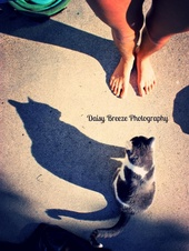 DaisyBreeze Photography