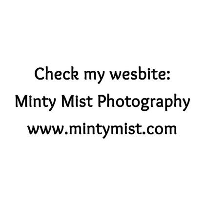 Minty Mist Photography