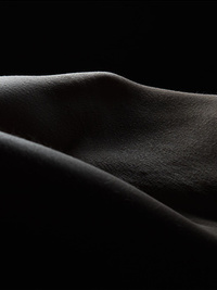 Bodyscapes by Brad Page