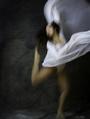 Tony Pagliaro Photography