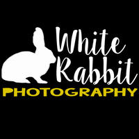 whiterabbitphotographs