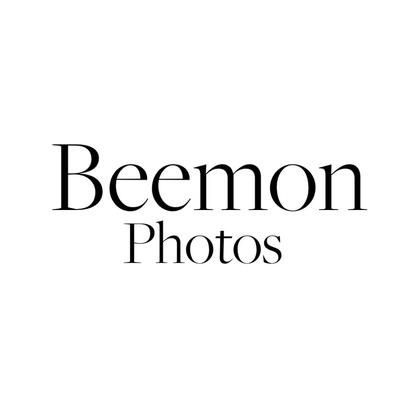 Beemon