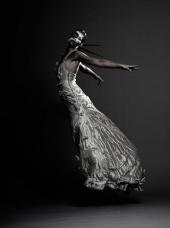Matt Lee photography