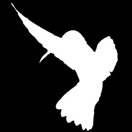 Hummingbird Co