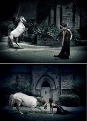 DirectShots Photography
