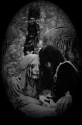 Black Widow Photography