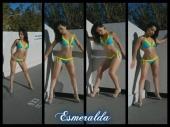 The Esmeralda