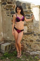 Model - Allison