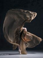 Photographer Spotlight: Gene Schiavone