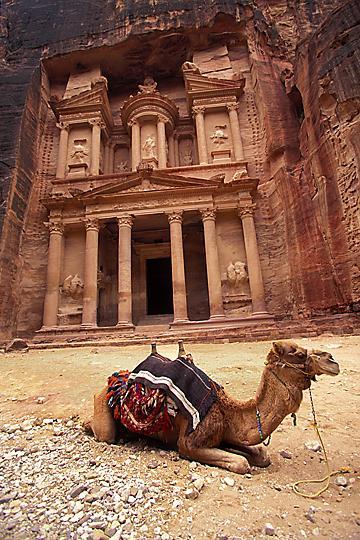 petra, jordan Oct 13, 2005 ira meyer Camel in front of the Treasury