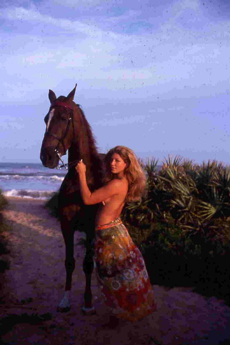 Florida Oct 27, 2005 William Dooley American Saddlebred