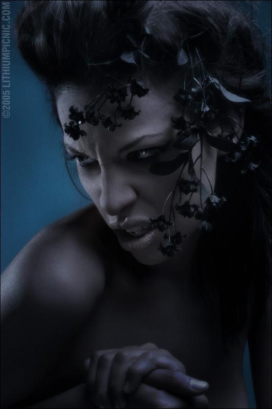 Nov 22, 2005 2005 LITHIUM PICNIC model: Linda Miakoda Makeup: Charissa