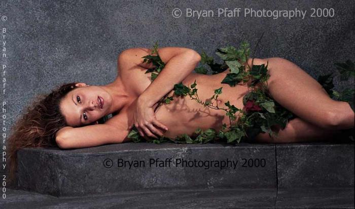 May 15, 2006 © Bryan Pfaff Photography 2000 The Vine