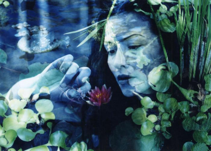 Jun 22, 2006 Alexander 23. 2006 All Rights Reserved. Ophelia 1. Water Lily and My Goddess.