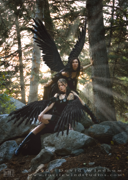 Oct 22, 2006 2006 David Windham - Faerie Wind Studios Hrafn - Odins Ravens