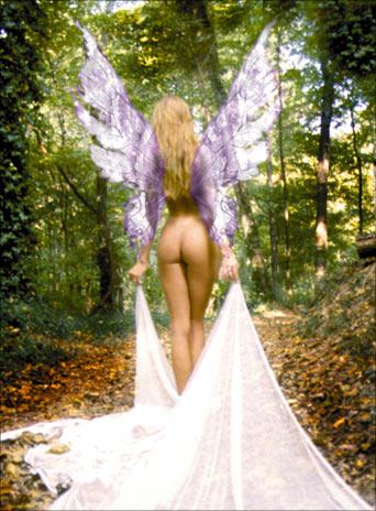 Oct 24, 2006 studiospike fairy