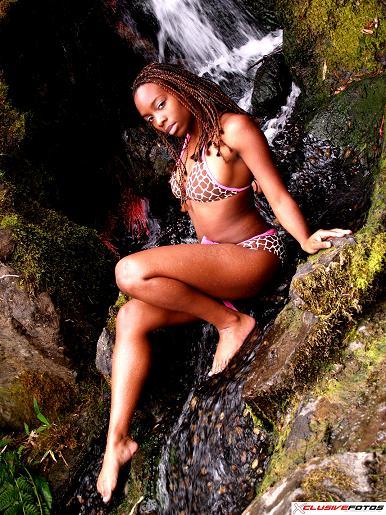 Japanese Garden Seattle WA Oct 30, 2006 waterfall