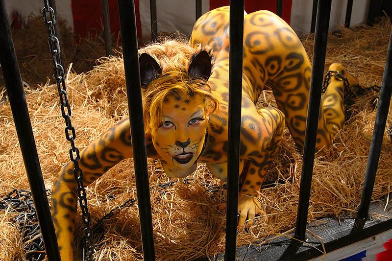 San Francisco Dec 02, 2006 Second Skin Images Leopard Prowling