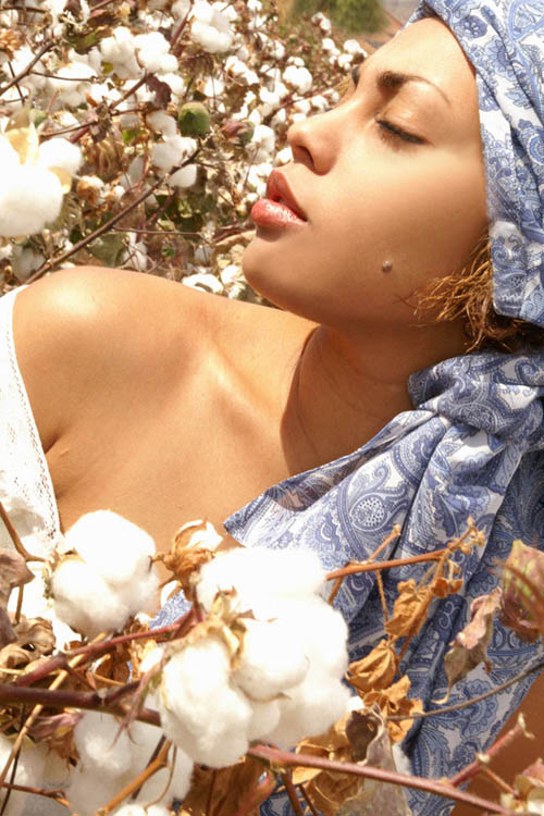 Dec 03, 2006 Ffion Z in cotton