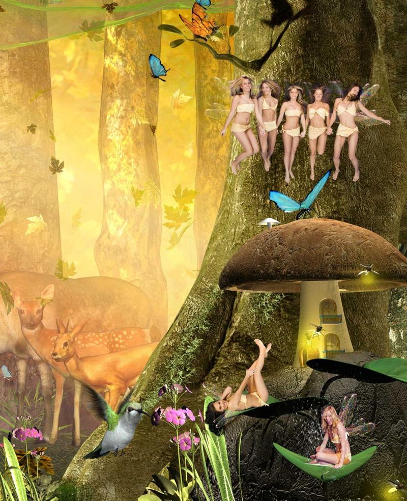 Mar 09, 2007 2006 Robert J. Undi fairys