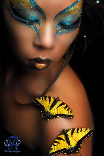Studio May 11, 2007 Miguel A. Pardo/ Mikaelangelo Photography Butterfly 1