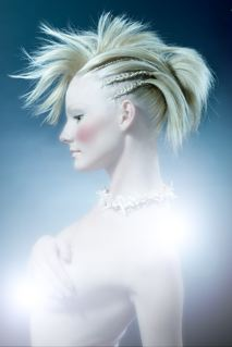 Aug 15, 2007 North American Hairdresser of the year entry