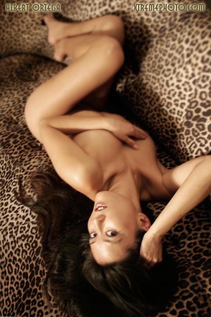 Bobbi Billards home, CA Aug 30, 2007 Albert Ortega Miss Becky on Leopard Skin