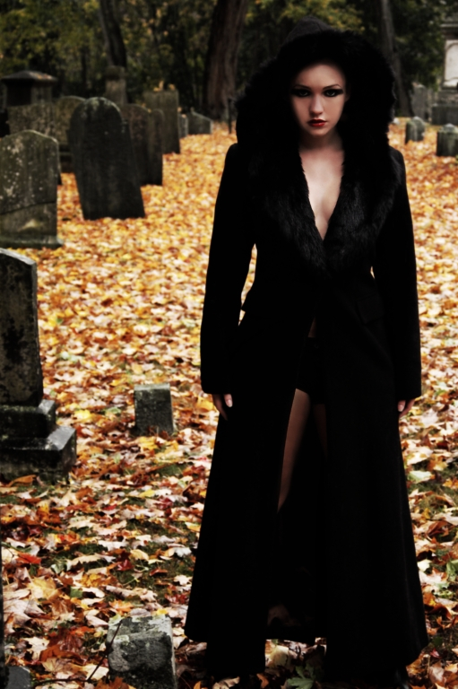 Nov 08, 2007 Scott Lawrence Smith Black Widow