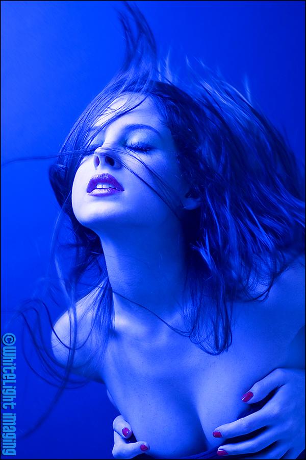 Dec 03, 2007 ©WhiteLight Imaging Blue night...
