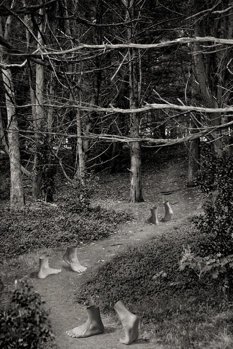 Dec 05, 2007 A foot path