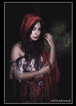 Regina  Dec 12, 2007 Willowbranch Dread Riding Hood