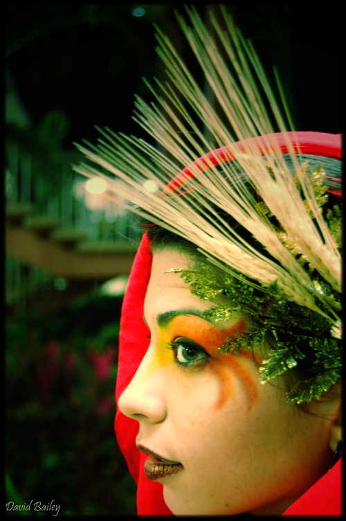 Tampa Dec 15, 2007 David Bailey Phoenix Beauty (Makeup, Wardrobe, Styling by David Bailey
