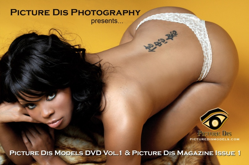 Chicago, IL Dec 27, 2007 Picture Dis Photography Picture Dis Magazine Issue #1 & DVD Vol. No 1 Release Party Flyer