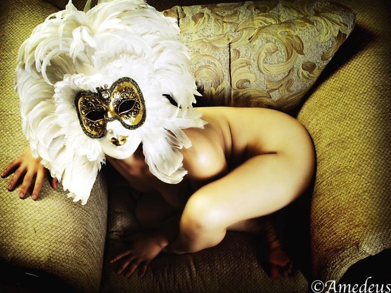 Fremont Studio, CA Dec 27, 2007 Amedeus ... feathered mask ...