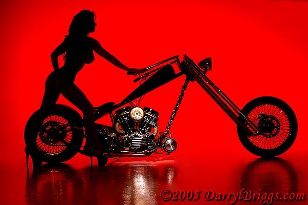 Jan 17, 2008 DarrylBriggs.com Die Hard Custom Silhouette