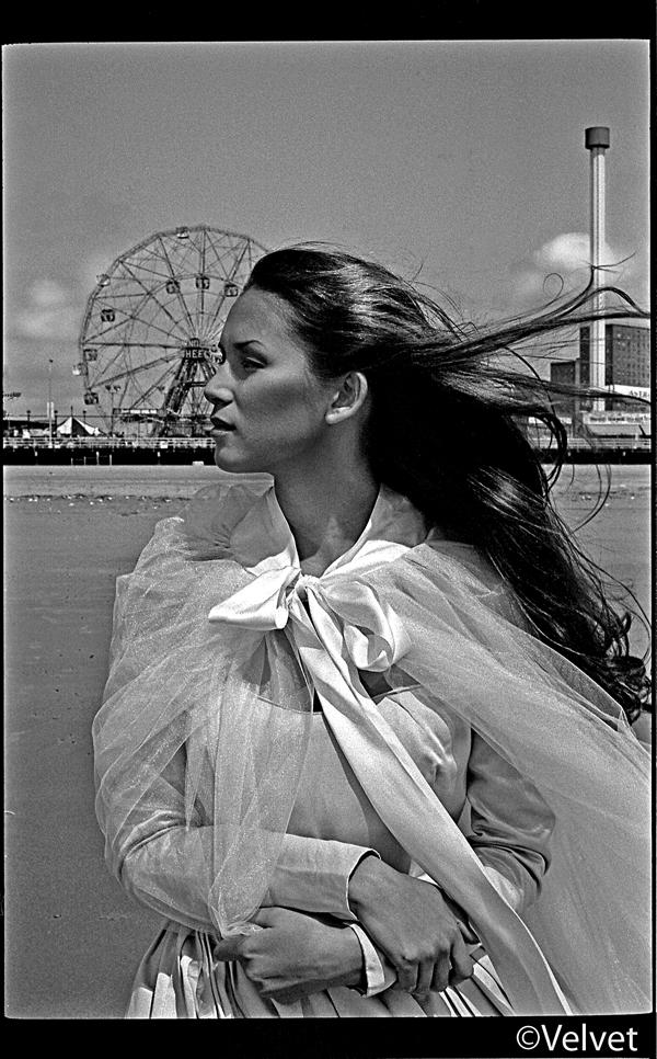 Coney Island Feb 10, 2008 Velvet Carosel
