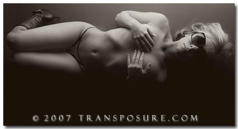 Transposure Feb 11, 2008 Kenneth P. Volpe Gradient
