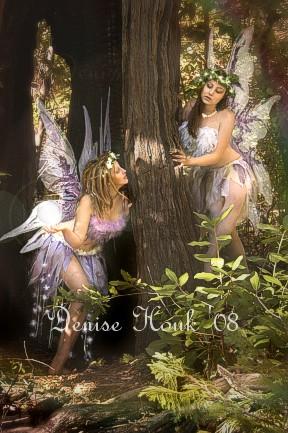 No CA Feb 17, 2008 Denise Houk 2008 Fairy play