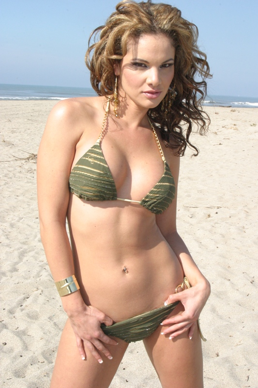 Feb 18, 2008 model