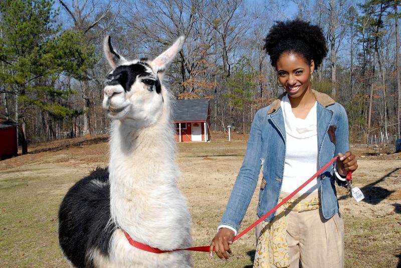 Outside Atlanta, GA Feb 20, 2008 (c) Eddie Little Model at Llama Farm