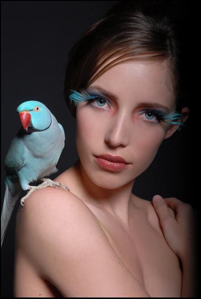 Mar 13, 2008 Samantha Wolov Cielo the Parakeet