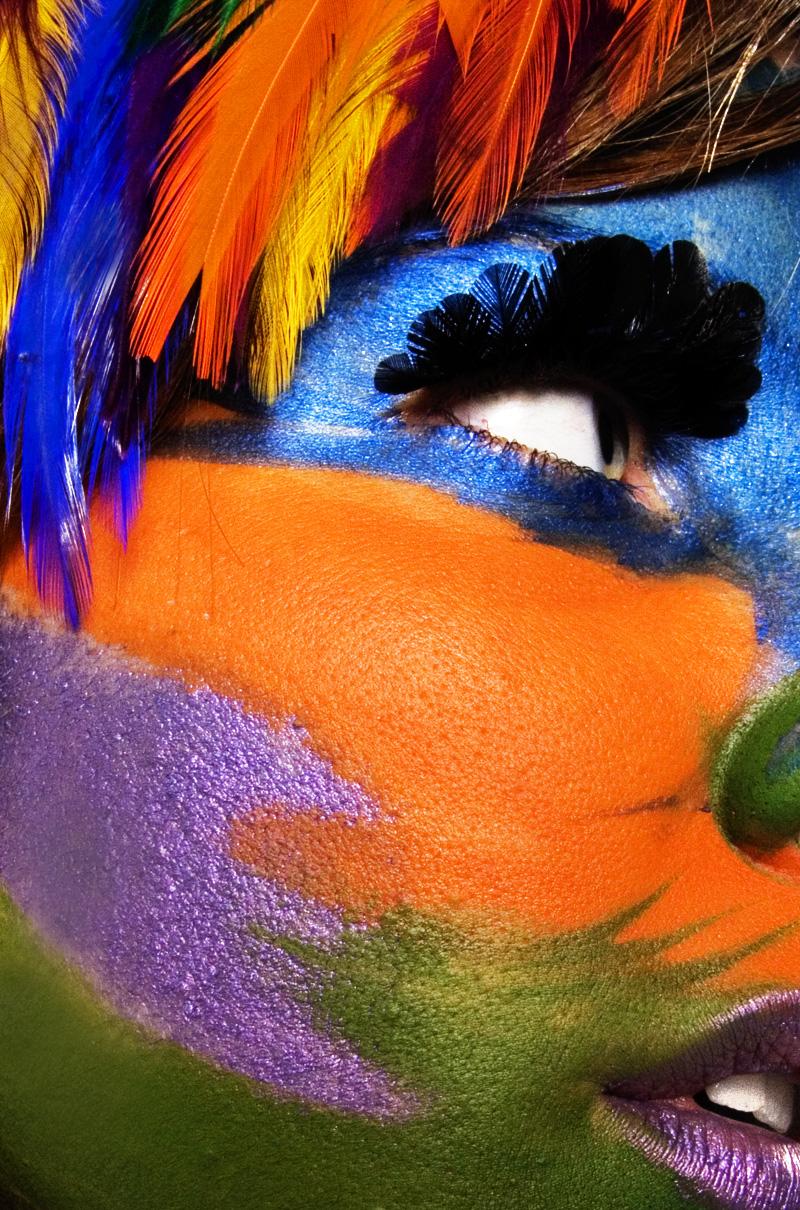 San Francisco Mar 27, 2008 Julia Comita Parrot